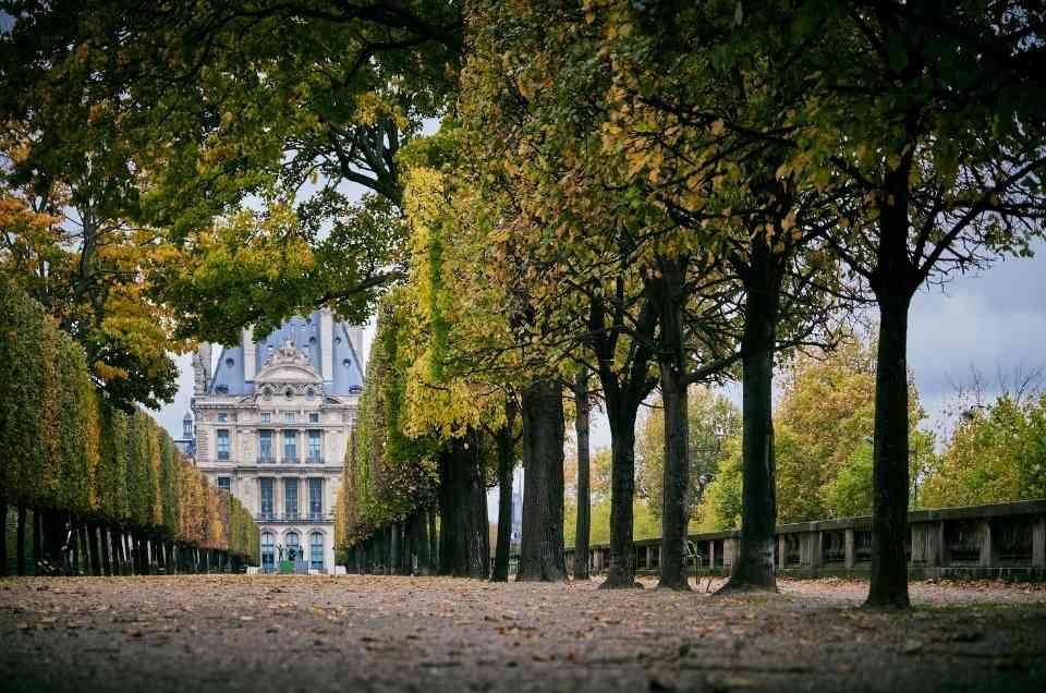 best picnic spots in paris